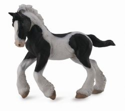 Gypsy Foal - Black & White Piebald